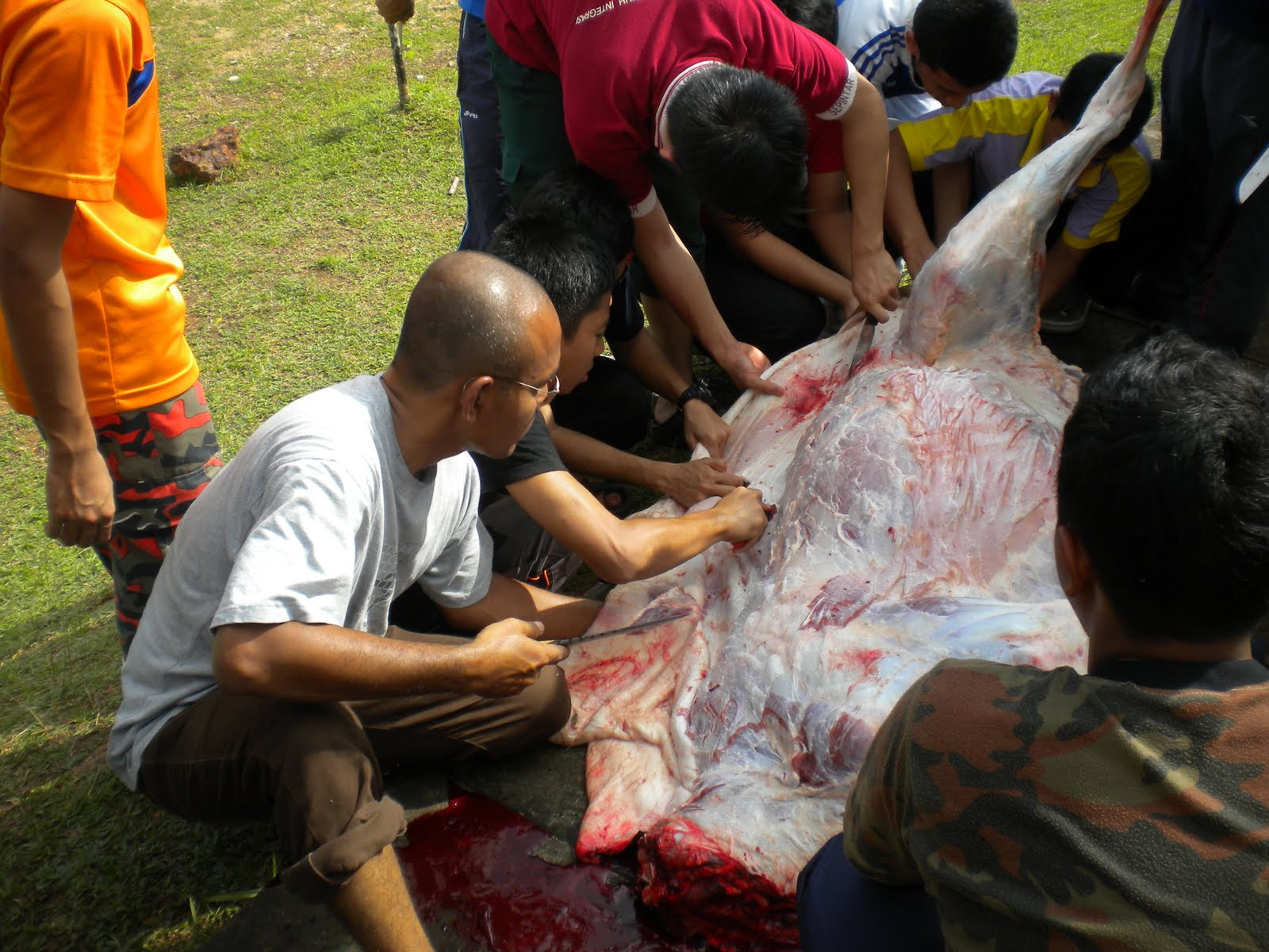 SBPI Rawang berjaya menganjurkan Ibadah Korban pada 16/11/2010 iaitu