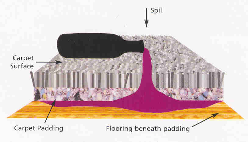 how to clean up spilled milk on car carpet