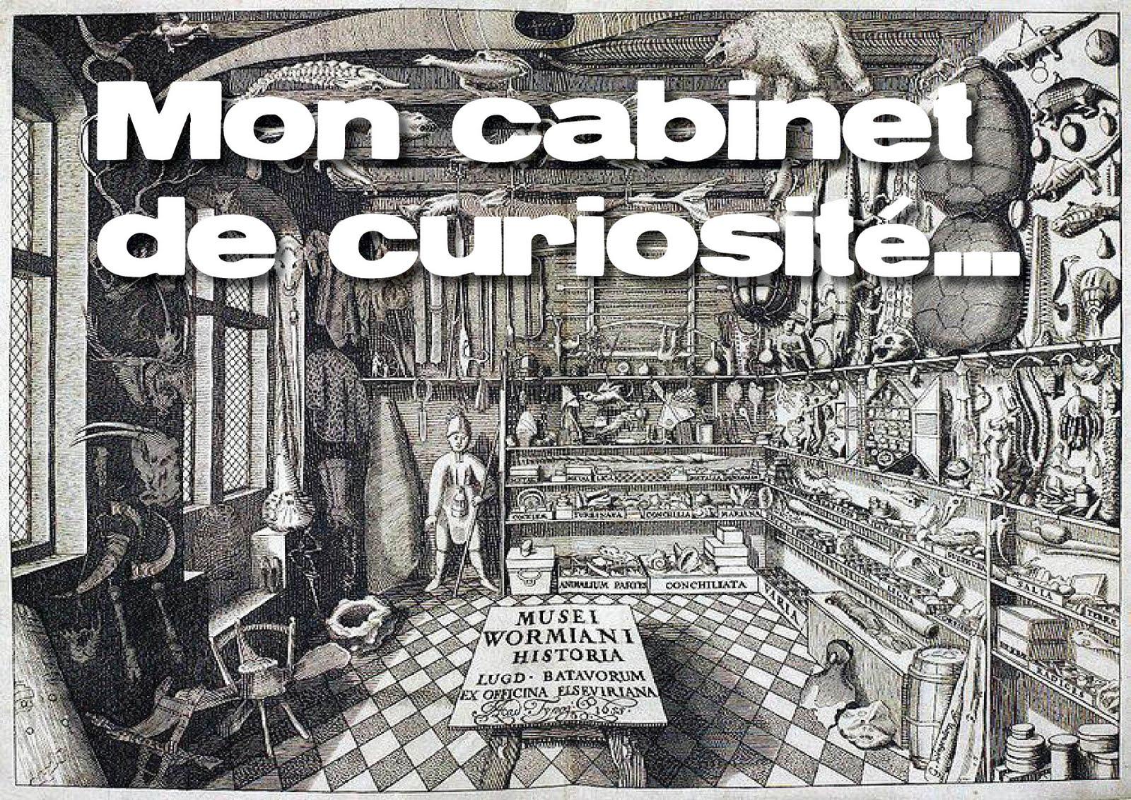 Mon cabinet de curiosit meine wunderkammer - Cabinet de curiosite forum ...