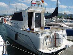 mi barco un RODMAN 8'70