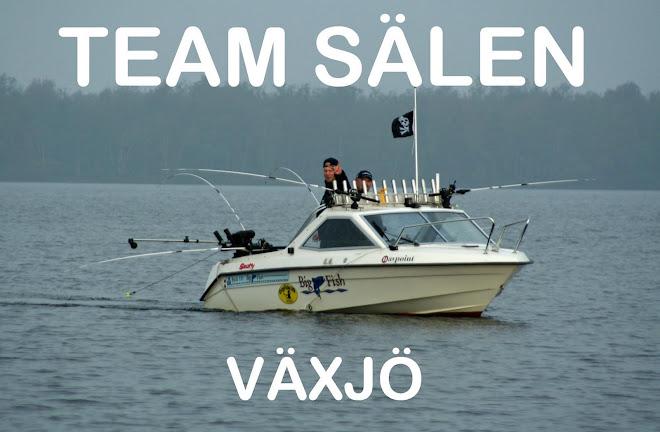 Team Sälen