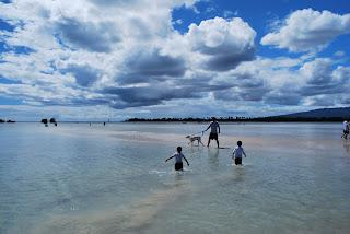 Hickam Dog Beach