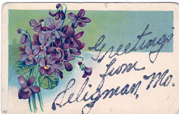 Seligman Post Card