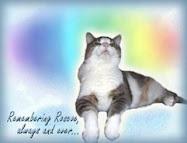 Remembering Roscoe