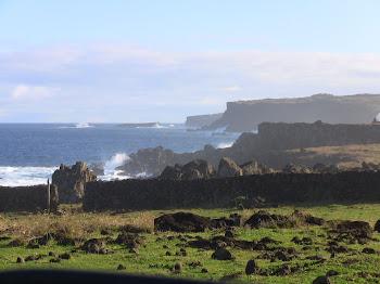 la côte de l'île