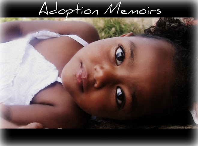 Adoption  Memoirs