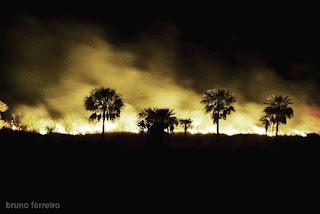 http://2.bp.blogspot.com/_r2e8h1p8yo0/SlFxY7kTVRI/AAAAAAAAEmA/nOge9q1NPN4/s320/05+Deforestaci%C3%B3n+en+el+Chaco+causa+la+desertificaci%C3%B3n+y+salinizaci%C3%B3n,+dicen.jpg