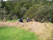 Matua Stan Kingi and Koji Yuki Ainu Leader Planting Totara