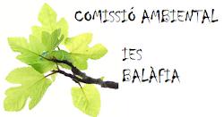 COMISSIÓ AMBIENTAL