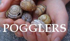 Pogglers
