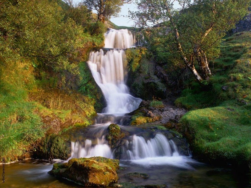 Paisajes hermosos con frases bonitas imagui for Fotos de jardines preciosos