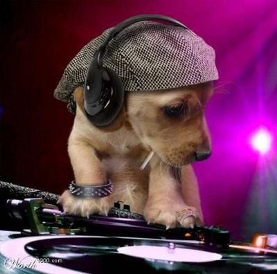 AQUI EL DJ
