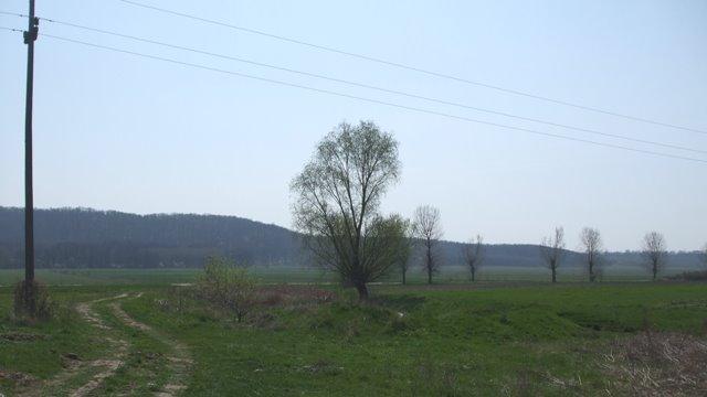 Izlazul comunei Rogova