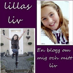 MIN DOTTERS BLOGG