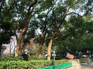 うつぼ公園の景色