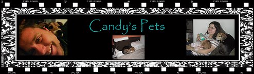 Candy's pets