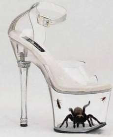 Tarantula in Freaky Shoes