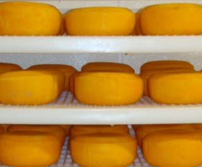 WASHED RIND CHEESE: Brother Laurent