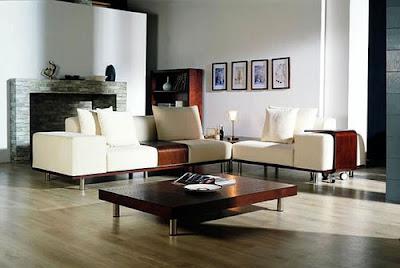 Contemporary-sofa-decorate-beautiful-living-room