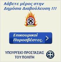 Άρθρο 15 Επικουρικοί Πυροσβέστες