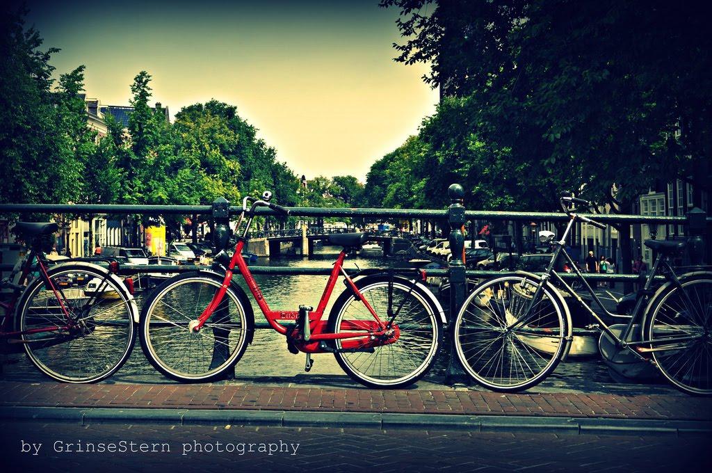 holland #1 ... | GrinseStern
