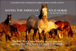 Saving The American Wild Horse