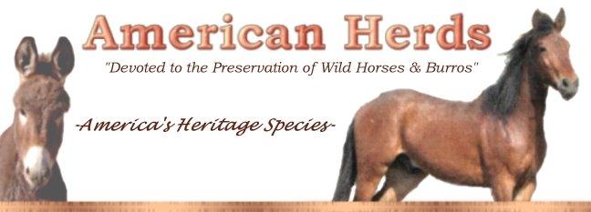 American Herds
