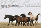 Among Wild Horses!
