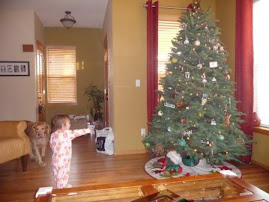 Savannah - waking up on Sunday to a Chistmas tree...she loves it!