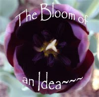 The Bloom of an Idea...