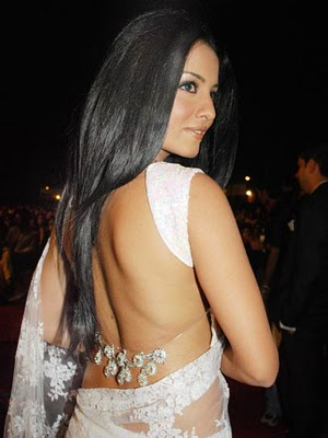 Bollywood actress in saree photos, pics, images, wallpapers and pictures