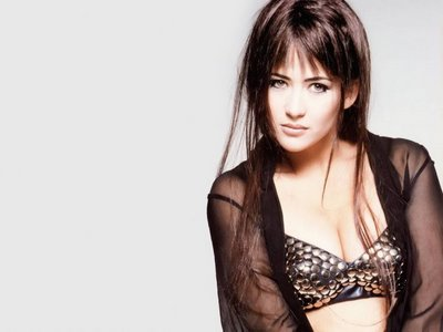 Hollywood Actress Sophie Marceau in Bikini