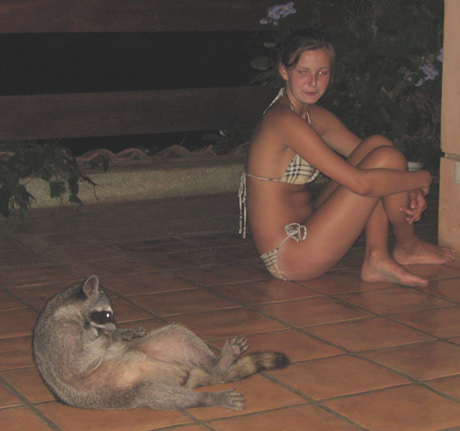 [08-9-10+racoon+&+girl+(edited,+trimmed)+IMG_3381.jpg]