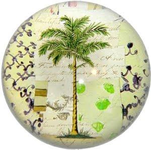 John Derian Palm Paperweight