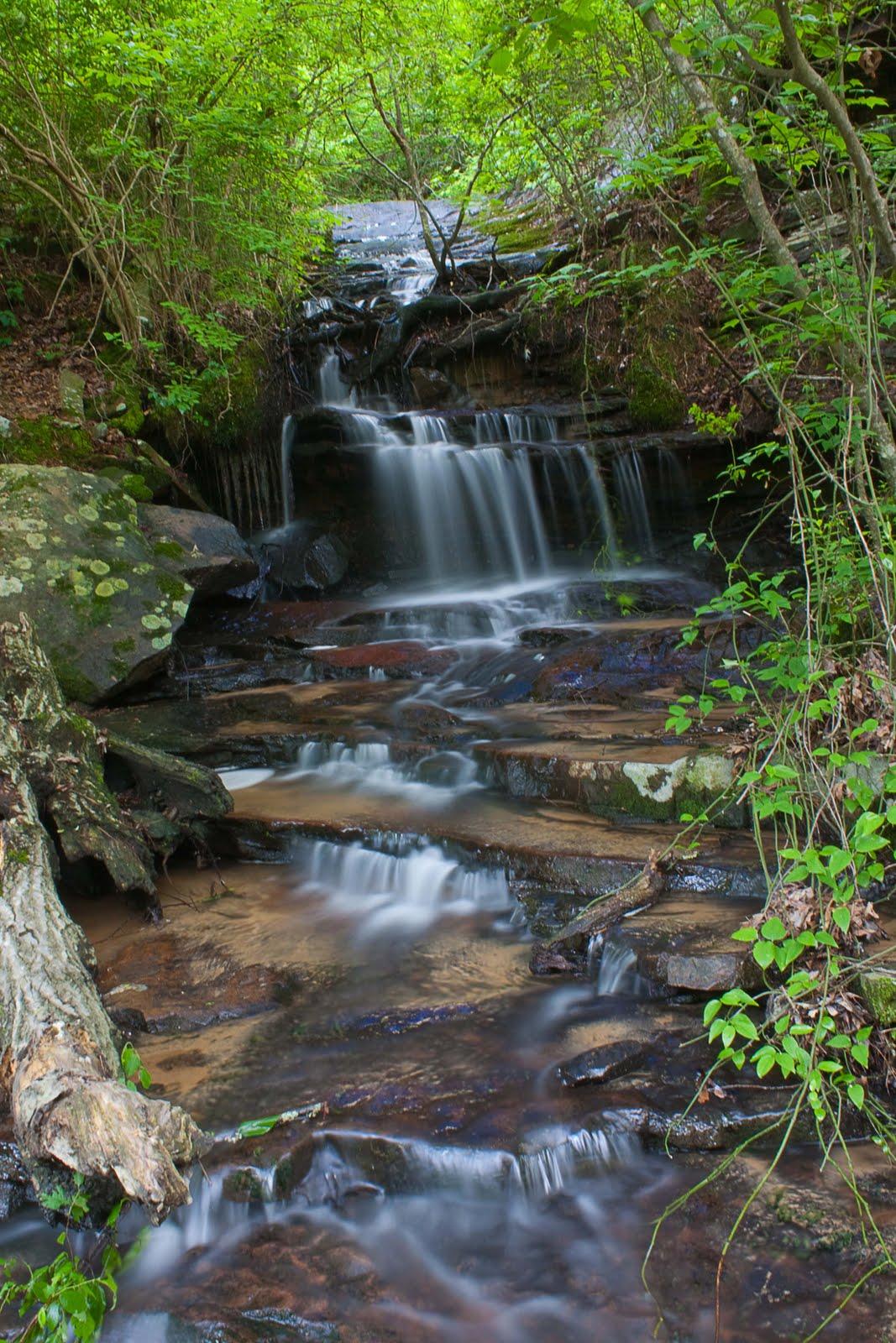 Waterfall hunting 5 2 cedar creek for Cedar creek