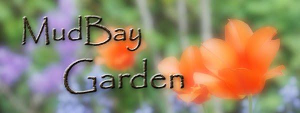 MudBay Garden