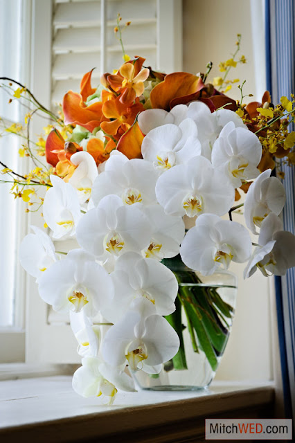 Phalaenopsis orchid bride's bouquet - Splendid Stems Floral Designs