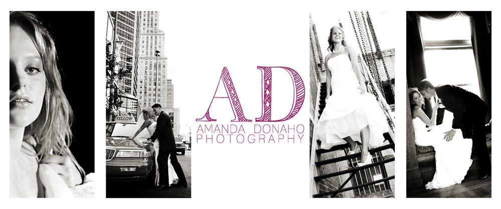 Amanda Donaho Photography