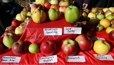 Apple Varieties Apple Day Yorkshire
