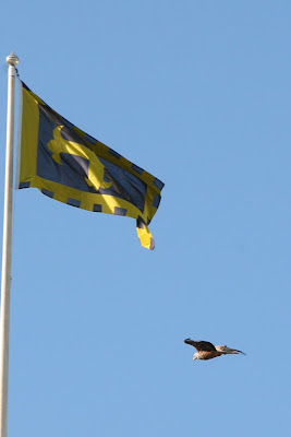 Harewood House Flag with Red Kite