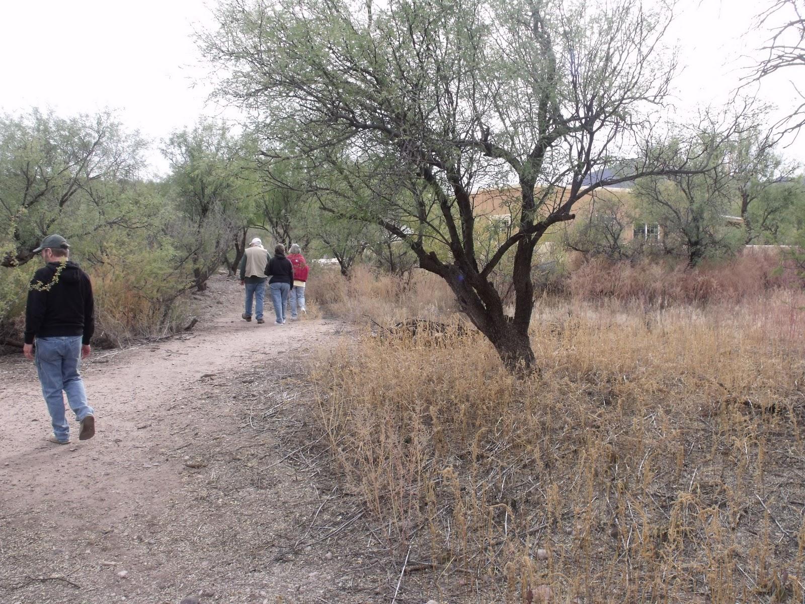 cathy u0027s crazy by design visiting arizona and the dam bridge