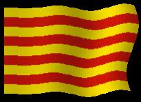 CLUSTER EN CATALÀ
