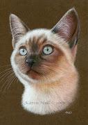 Step by step Tutorial - cat portrait catportrait