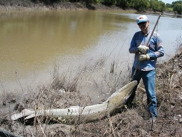 Durango texas the trinity river is on my mind thanks to for Trinity river fishing