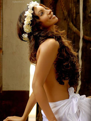 Sensuous Shama Sikander Backless PhotoShoot