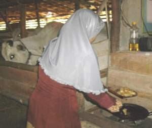 Ibu Rumah Tangga Memasak  dengan Biogas