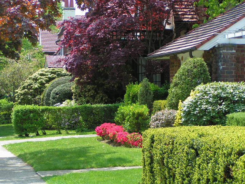 New Beautiful Garden Design