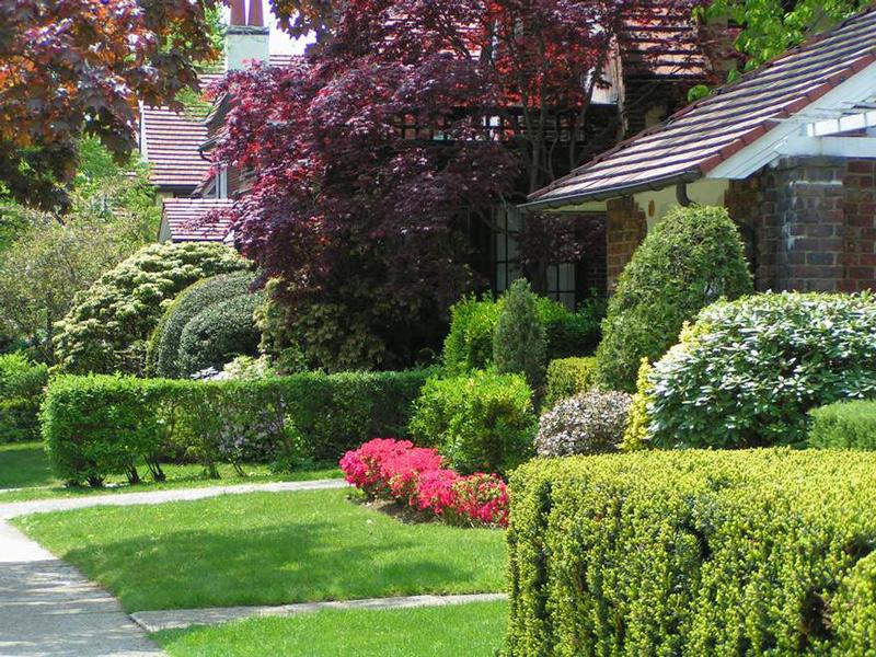 Contemporary Beautiful Garden Design