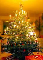 Navidad y Año Nuevo Citas