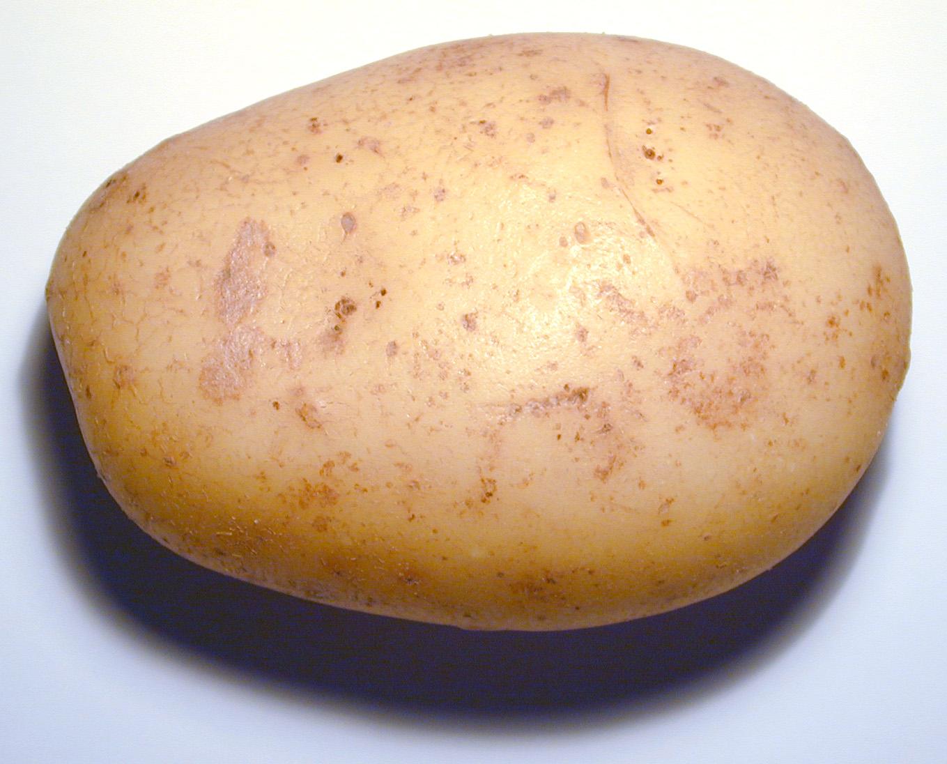 File:Potato and...